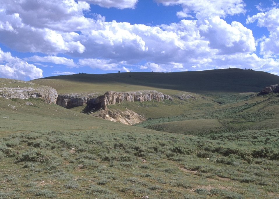 View of landscape in the drainage of the middle fork of the Powder River, Buffalo Field Office.