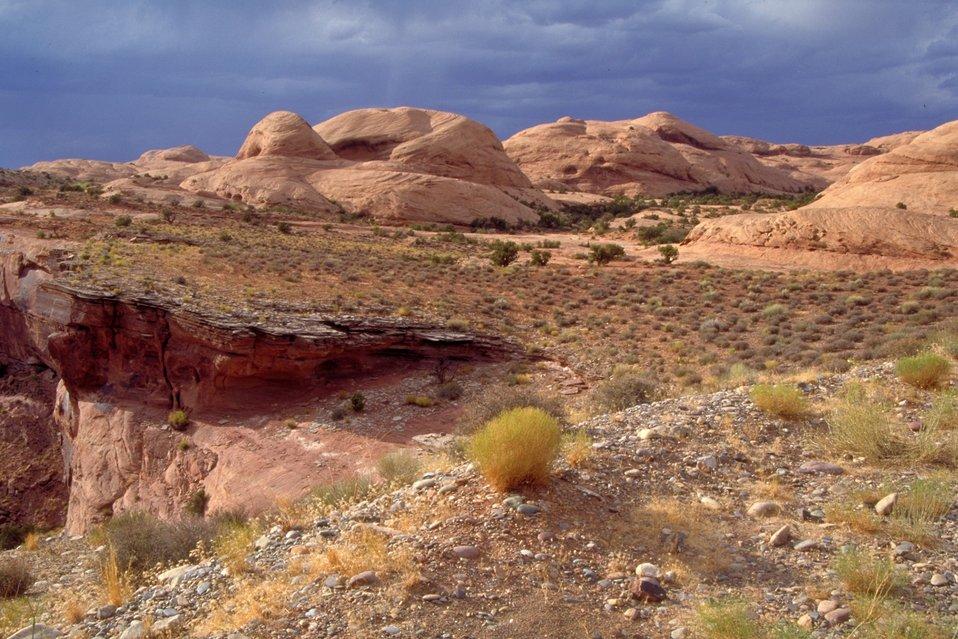Poison Spider Trail area near Moab, Utah.