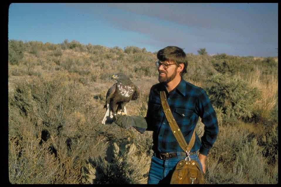 Ferrugenous Hawk  Birds of Prey National Conservation Area  BOP  Owyhee Field Office  LSRD  Lower Snake River District