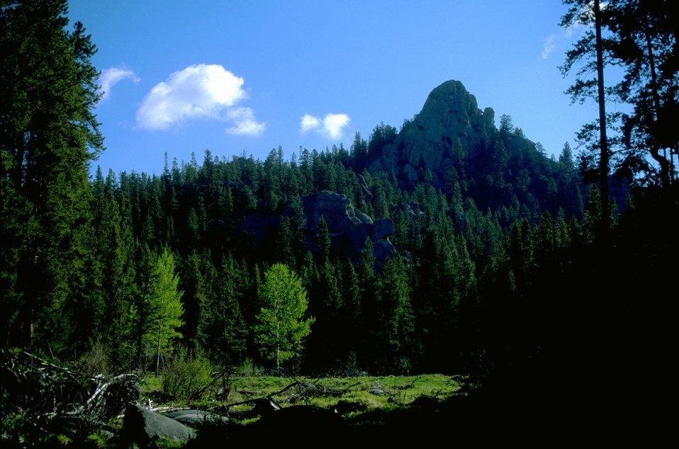 Sun-filled grassy meadow below rock formation