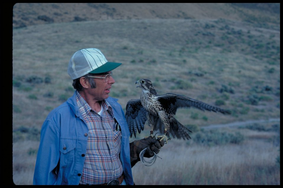 Birds of Prey National Conservation Area  BOP  Owyhee Field Office  LSRD  Lower Snake River District