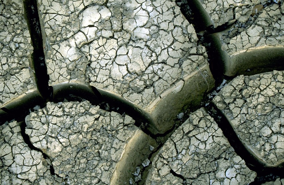 Mud cracks along the banks of the Powder River