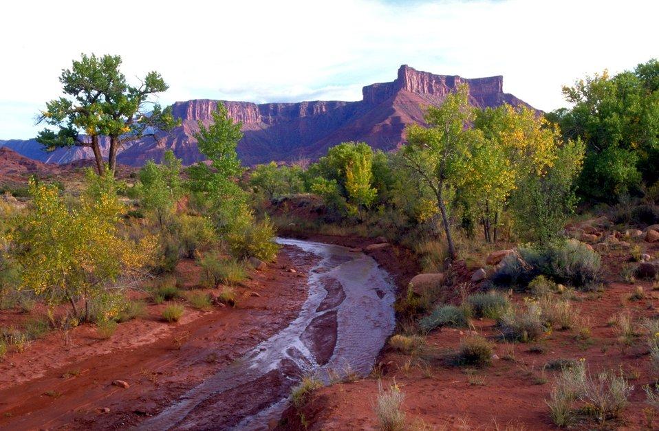 Mary Jane Canyon, Professor Creek and Adobe Mesa in background along Highway 128 near Moab, Utah.