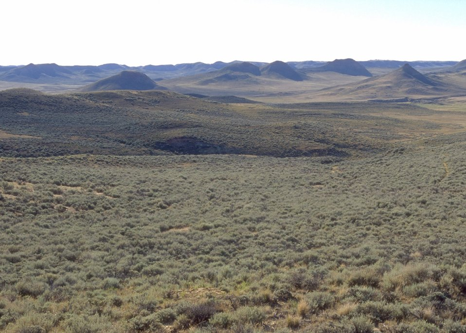 Landscape near Dry Creek Petrified Tree Area, Buffalo Field Office