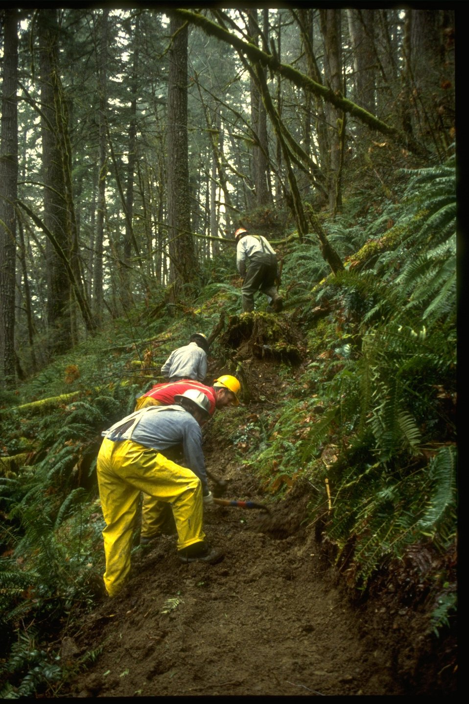 Crew members construct trail.