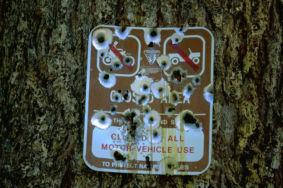 Regulation Sign destroyed by bullet holes