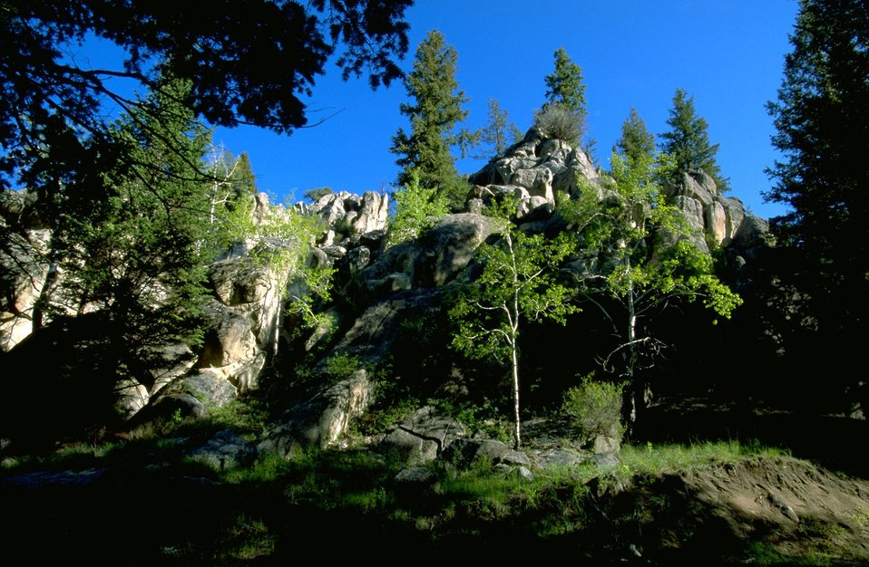 Rock Formations and Aspen