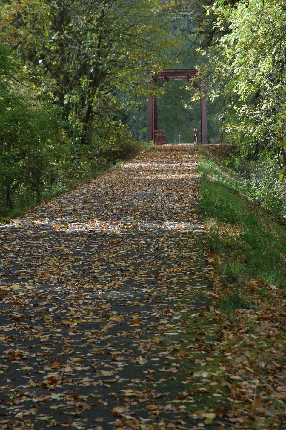The the 15.6 mile Row River Trail  trail not only attracts mountain bicyclists and horseback riders, but also road bicyclists and even a few in-line skaters.