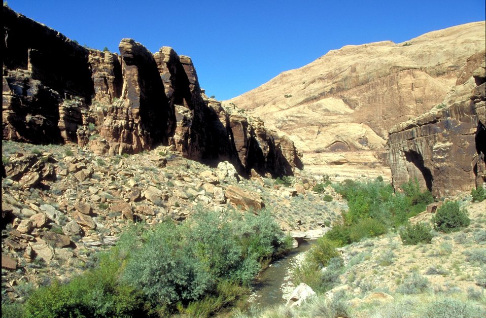 South fork of Mill Creek near Moab, Utah.