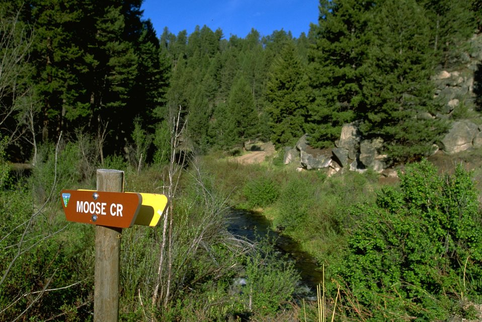 Moose Creek and Sign