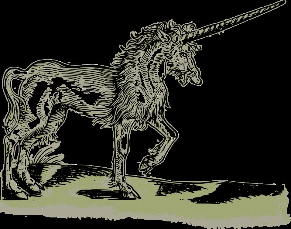Unicorn - 1551