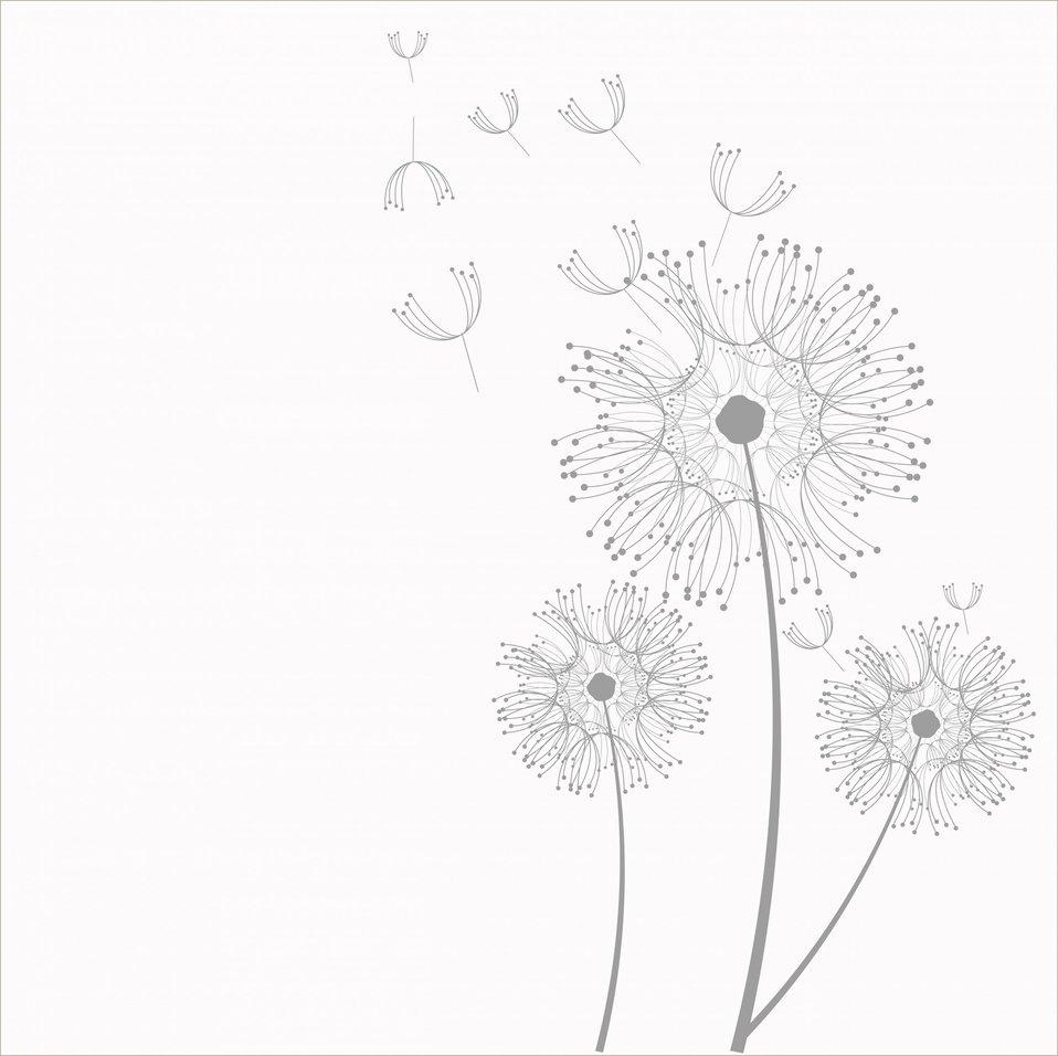 Dandelion flowers clipart