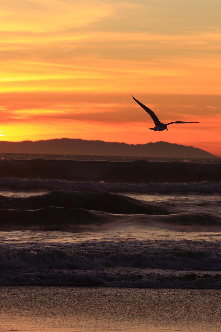 California sunset on new year's eve