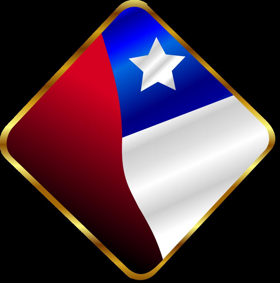 Chilean Pin