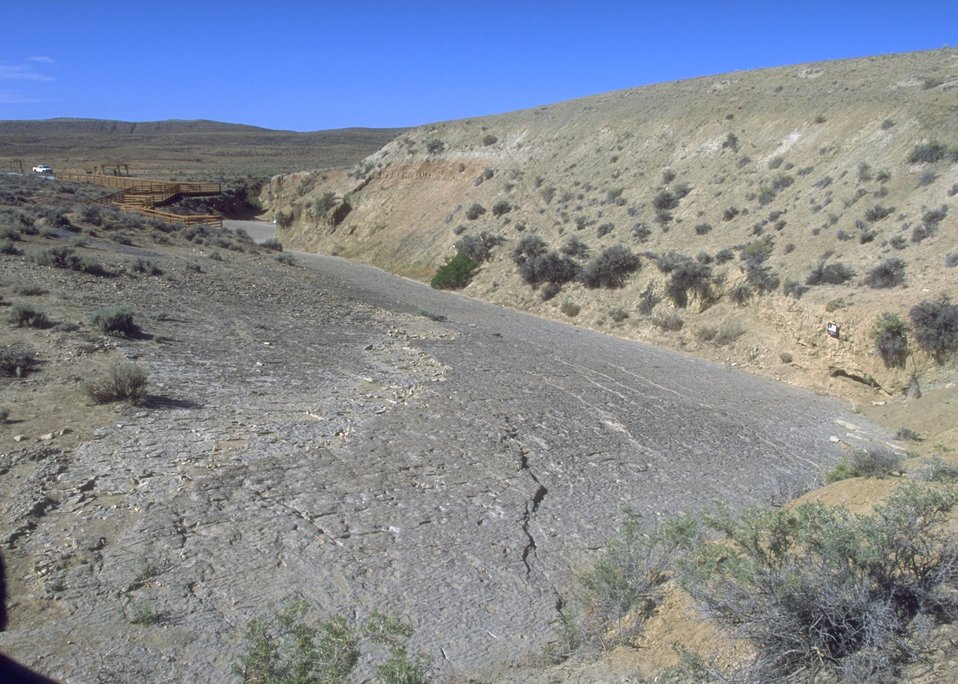 View of tracksite at Red Gulch Dinosaur Tracksite along Red Gulch/Alkali Back Country Byway, Worland Field Office.