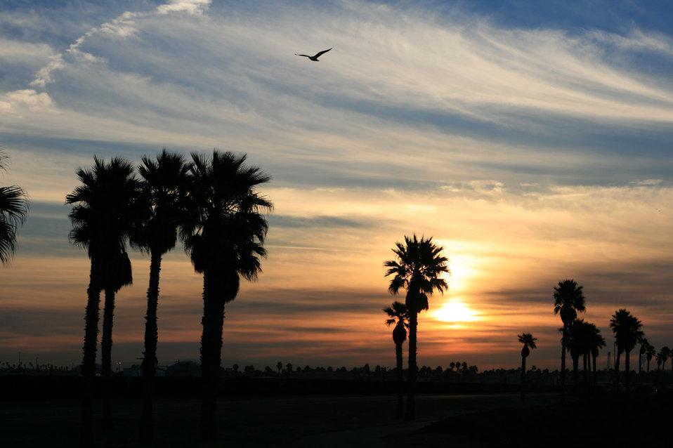 Pacific coast sunrise