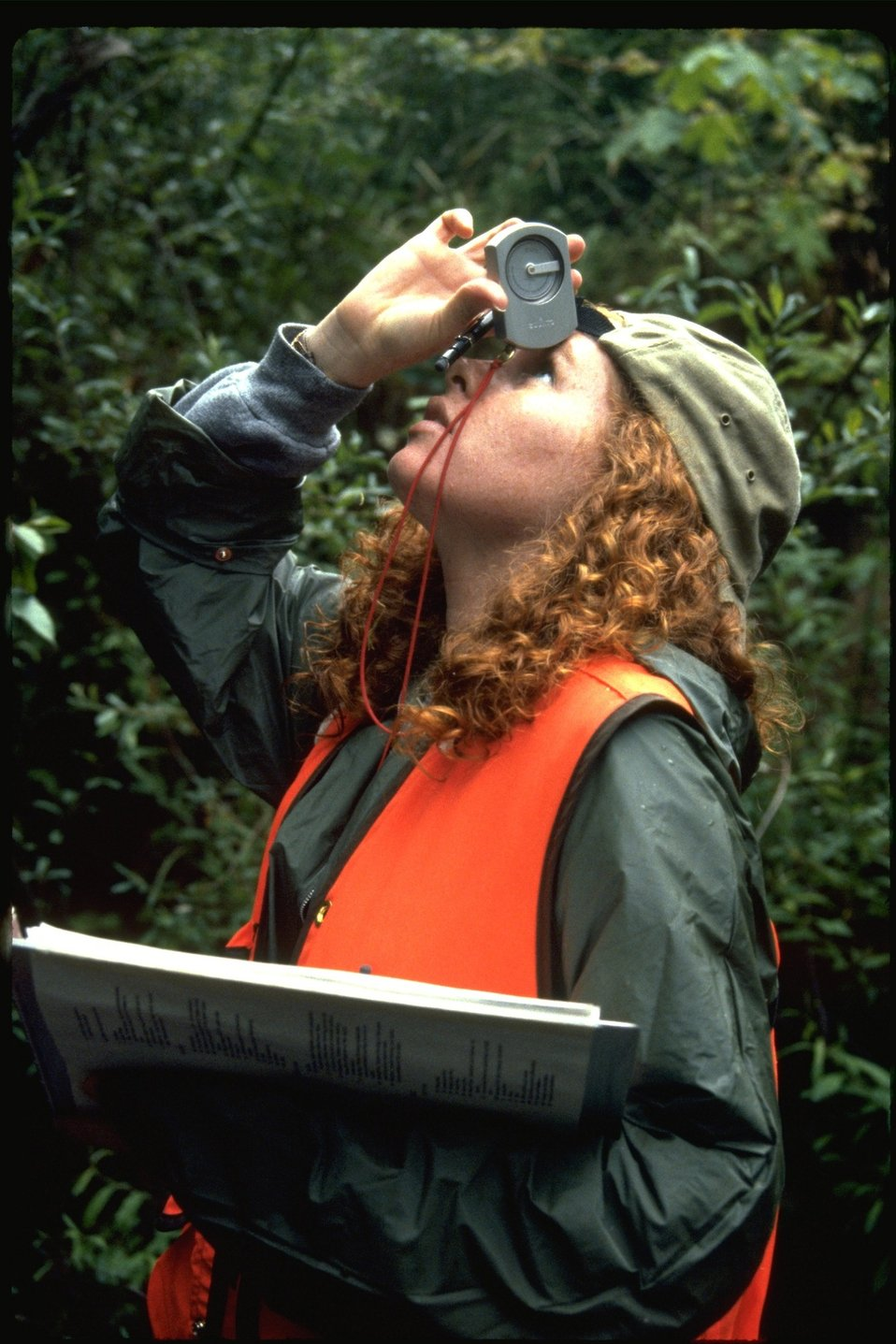 Sarah surveying Smith Creek during habitat study.