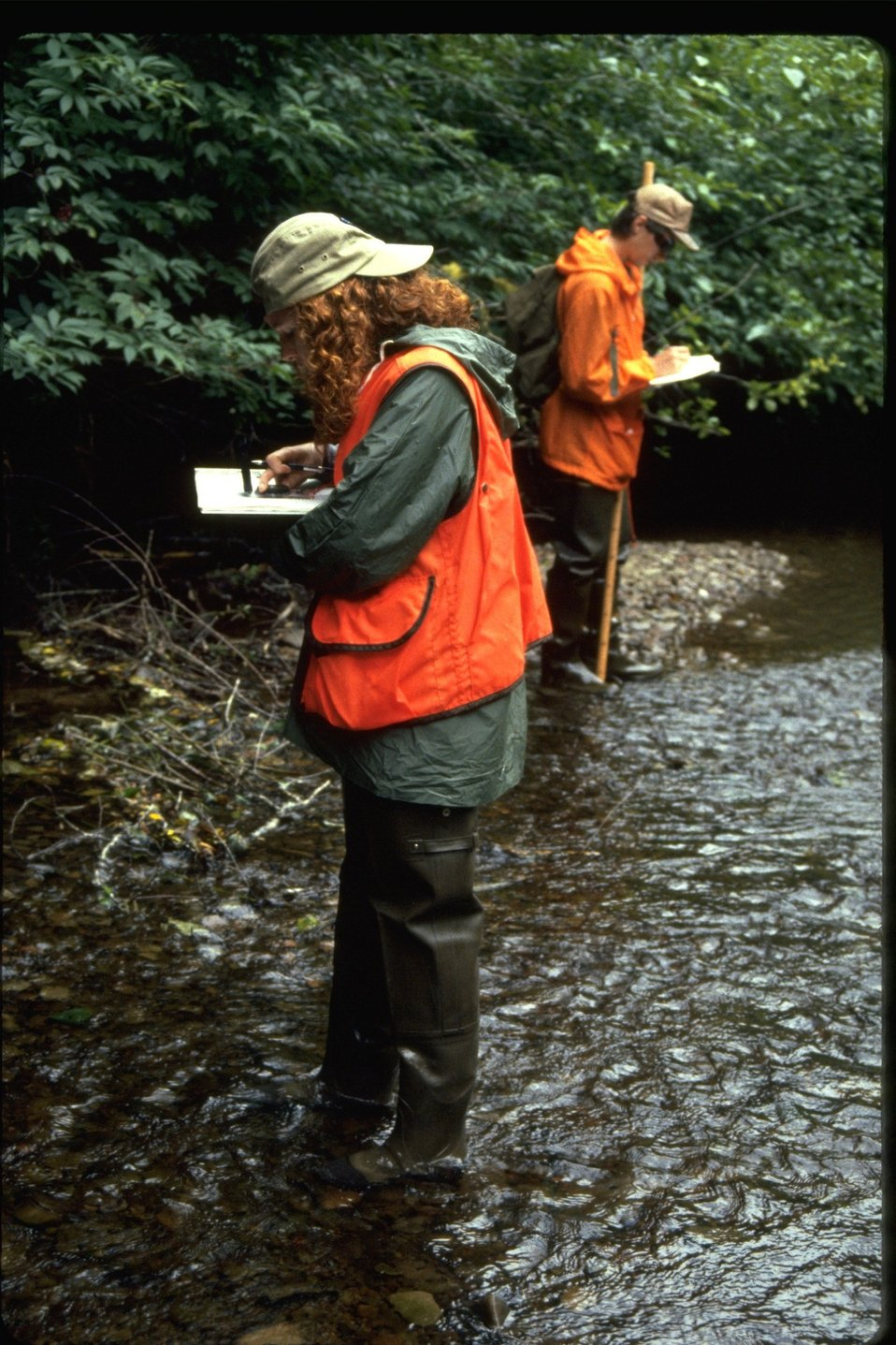 Sarah and Russ surveying Smith Creek during habitat study.