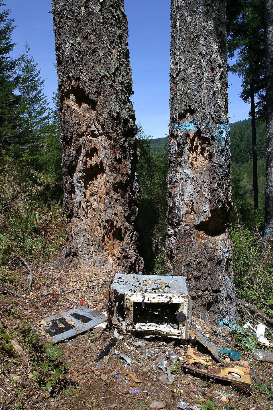 Illegal Dumping Ground In Santiam Watershed Used As A Shooting Range Public Domain Mark