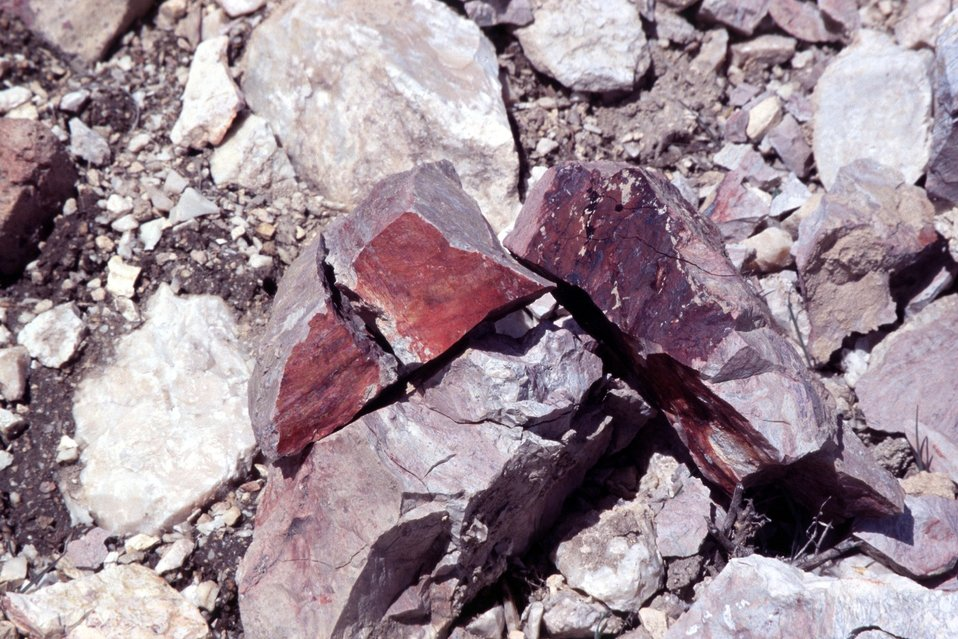 AML Glass Buttes, G3, Burns District.  This ore sample was broken open with a hammer to show the red cinnabar (mercury sulfide) ore inside.  The ore sample oxidizes readily to purple where it is exposed to air and sunlight.