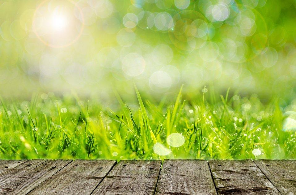 Wooden floor and green grass