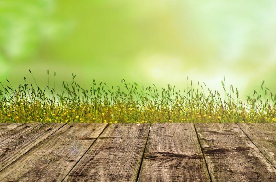 Wooden floor with green background